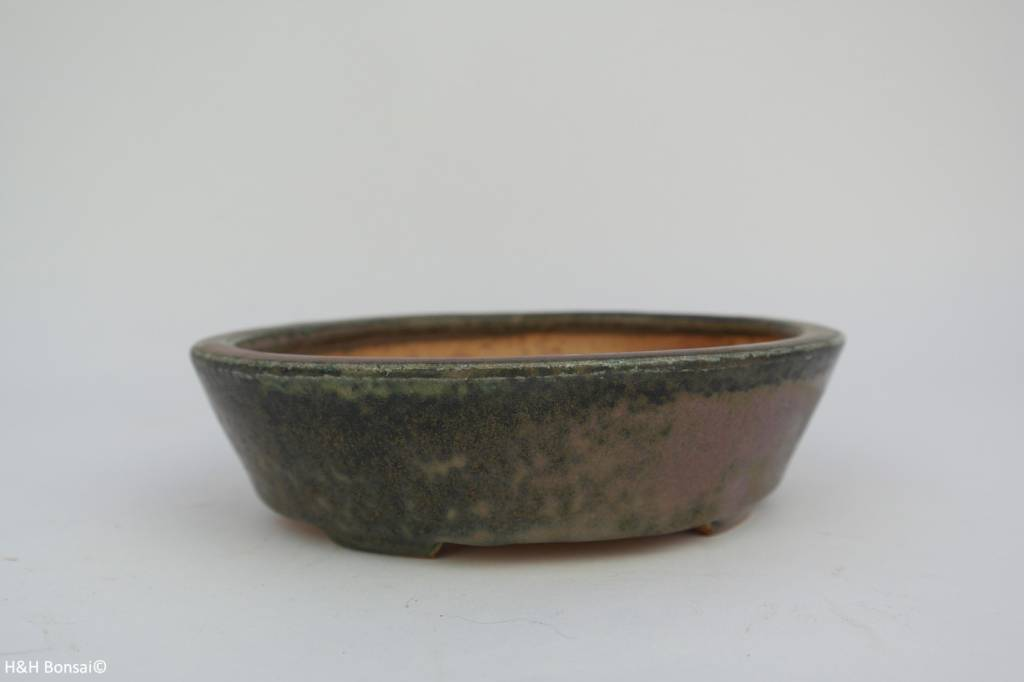 Tokoname, Bonsai Pot, no. T0160032