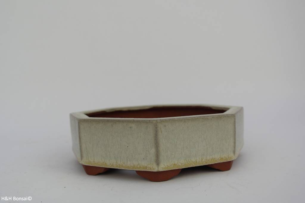 Tokoname, Bonsai Pot, no. T0160038