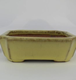 Tokoname, Bonsai Pot, no. T0160106