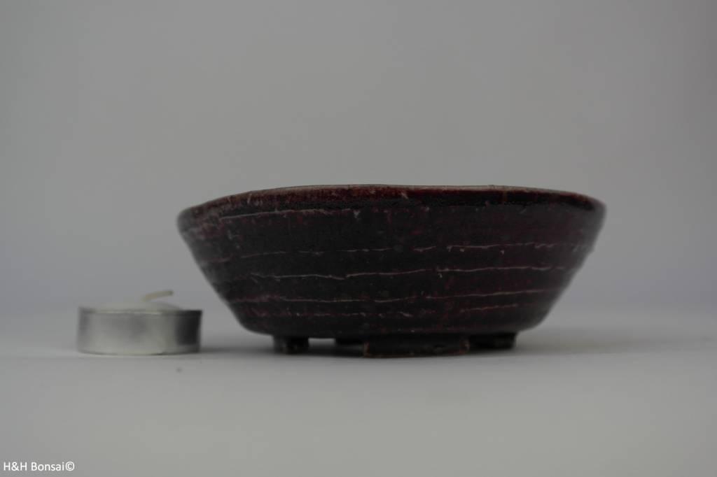 Tokoname, Bonsai Pot, no. T0160114