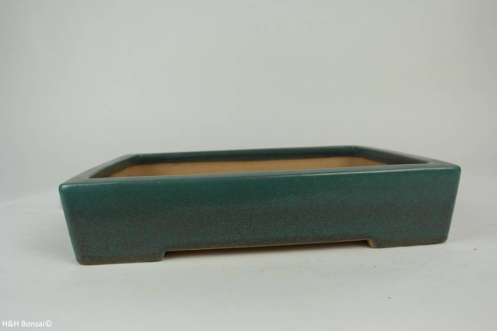Tokoname, Bonsai Pot, no. T0160163