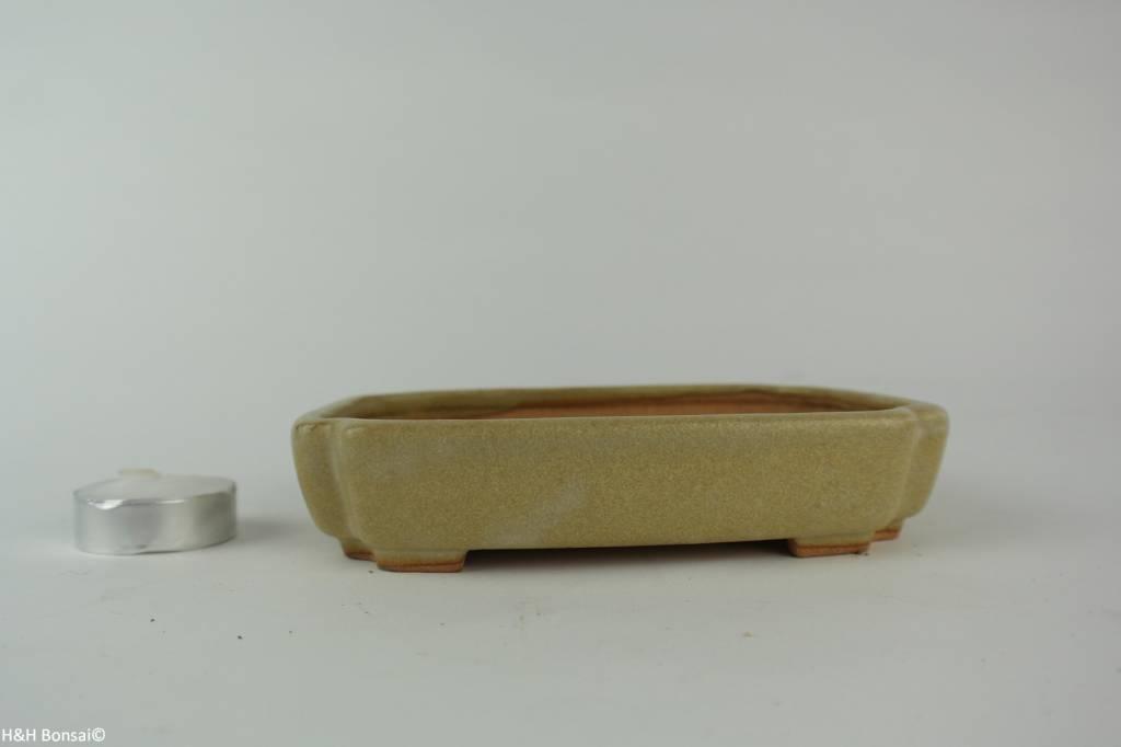 Tokoname, Bonsai Pot, no. T0160206