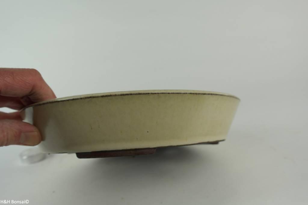 Tokoname, Bonsai Pot, no. T0160217