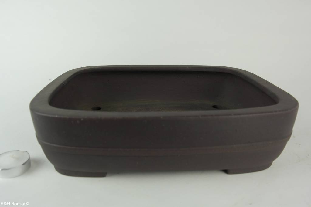 Tokoname, Bonsai Pot, no. T0160237