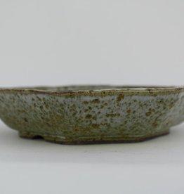Tokoname, Vaso bonsai, no. T0160029
