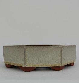 Tokoname, Vaso bonsai, no. T0160038