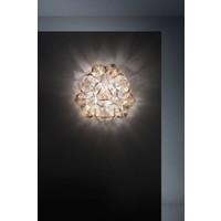 Wand-/plafondlamp Drusa