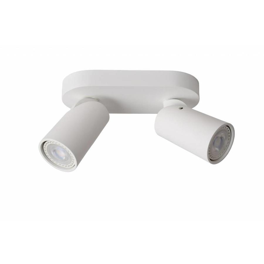 Xyrus 2-lichts LED Plafondlamp