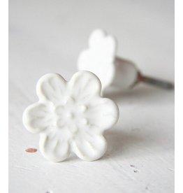Harveys Knop bloem wit