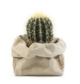 Uashmama Paper Bags Medium Sabbia
