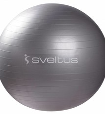 Sveltus Anti-burst ball Ø 65 cm - Gray