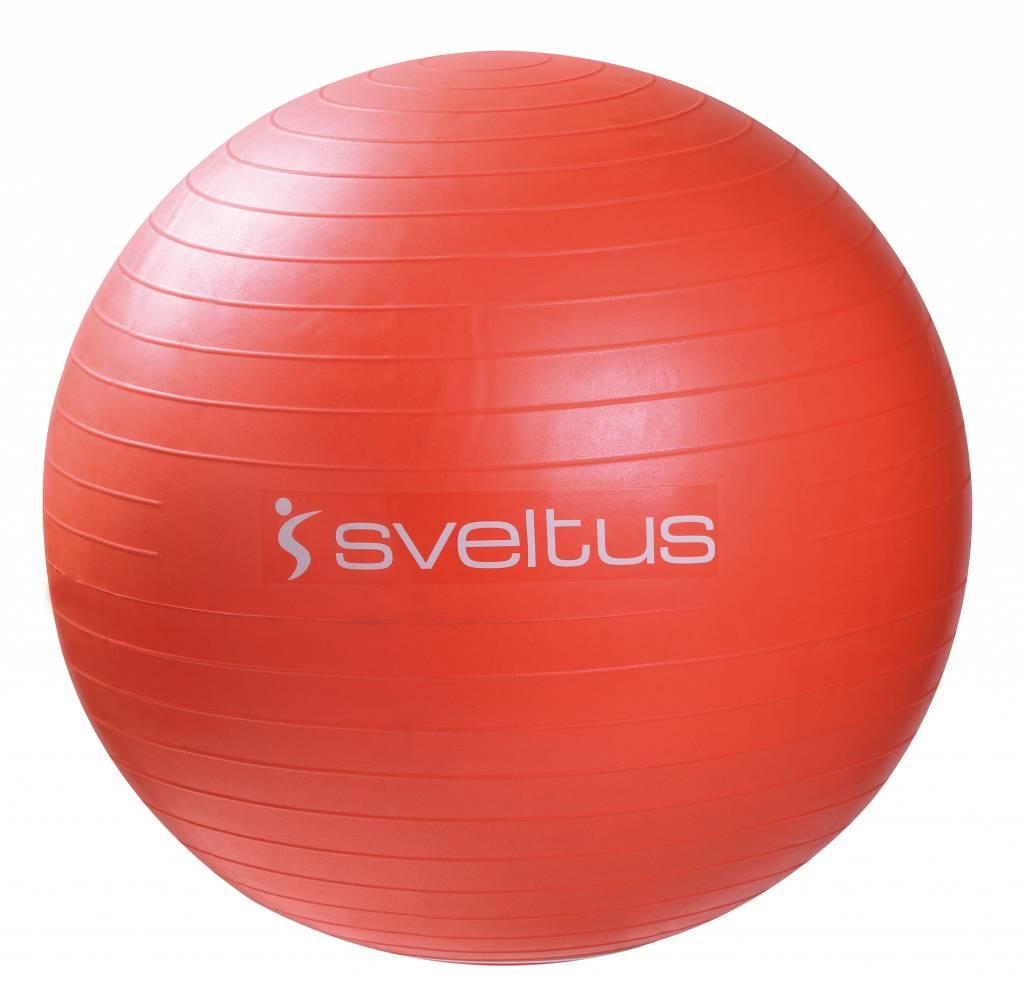 Sveltus Anti-burst ball Ø 65 cm - Gray