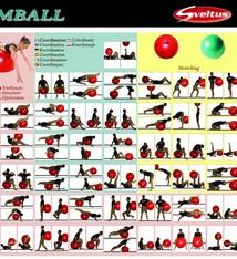 Sveltus Poster oefeningen met de fitnessbal