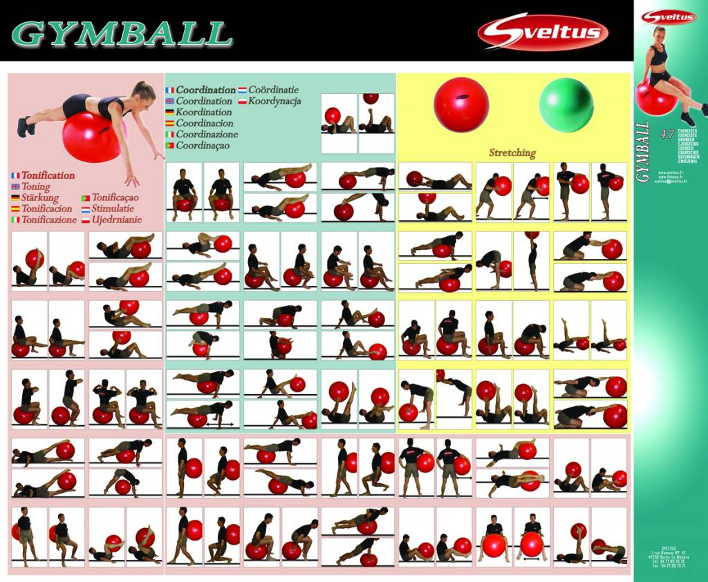 Sveltus Poster exercises with fitness ball