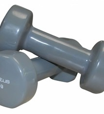 Sveltus Epoxy Dumbbell 3 kg x 2 Grey