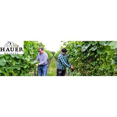 20.10 - Weinparty mit Jungwinzer André Hauer aus der Pfalz