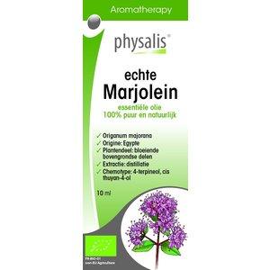 Physalis Physalis Marjolein
