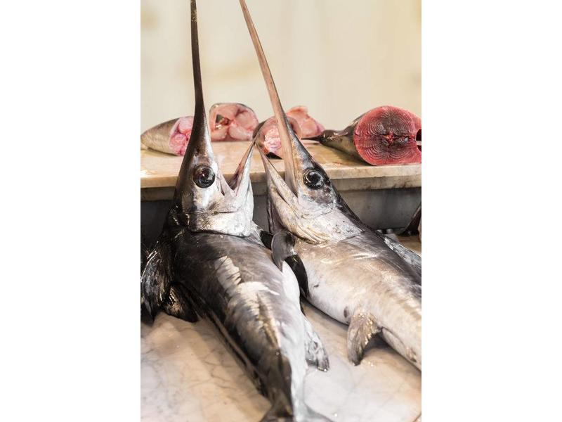 Pastasaus Zwaardvis