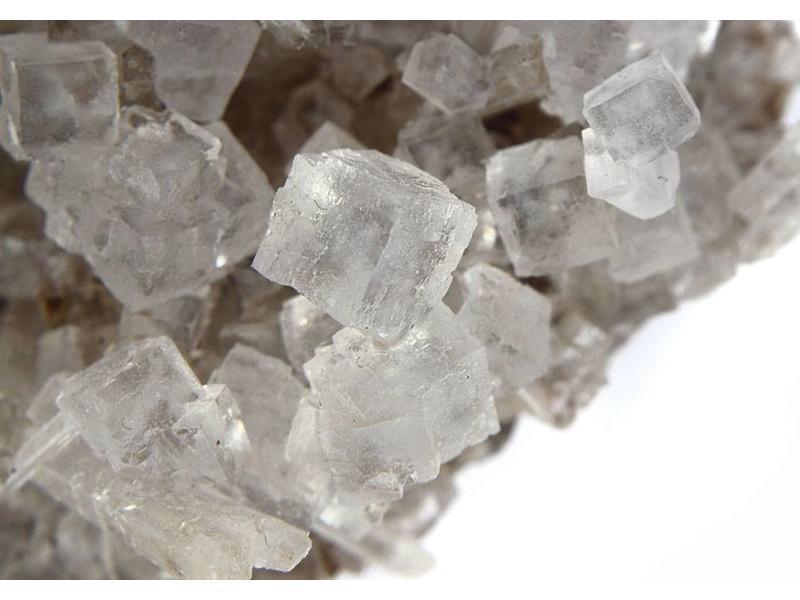 Zeezout met Citroen