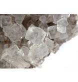 Zeezout met Kruiden