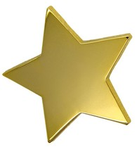 Godert.Me Big star pin goud