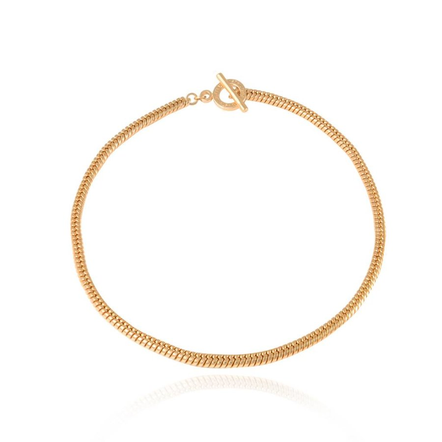 Special chain collier - Goud