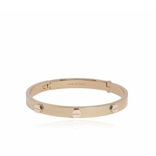 Fine rivets bangle - champagne goud