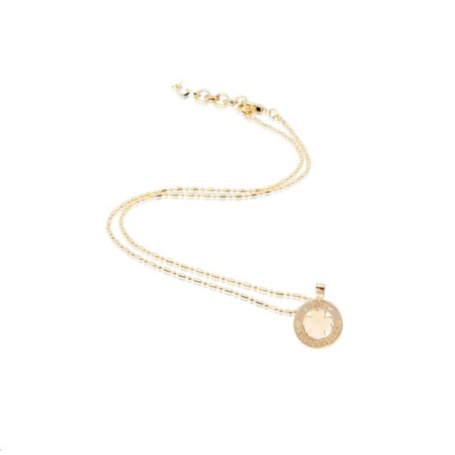 Medaillon small 45cm ketting - Goud/ Klavervier pendant