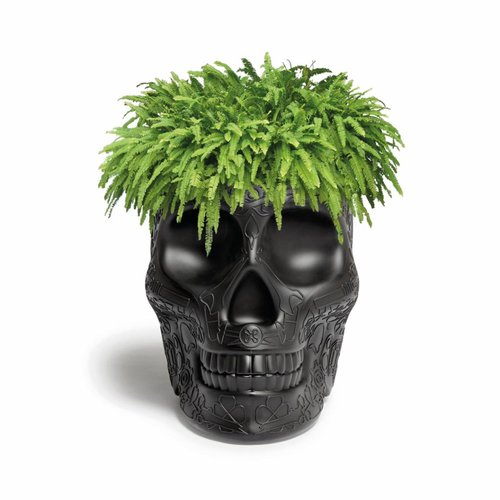 Qeeboo Pot Mexico Noir