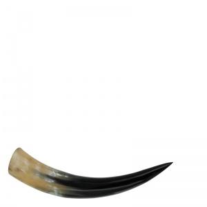 Lifestyle buffalo horn S
