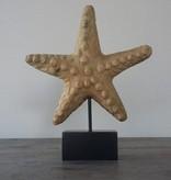 Object Starfish