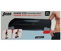 Penn Aerobic power step