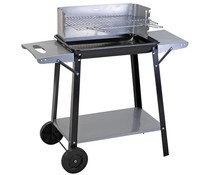 BBQ collection Barbecue rechthoekig 49x32 cm