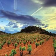Spaanse wijn