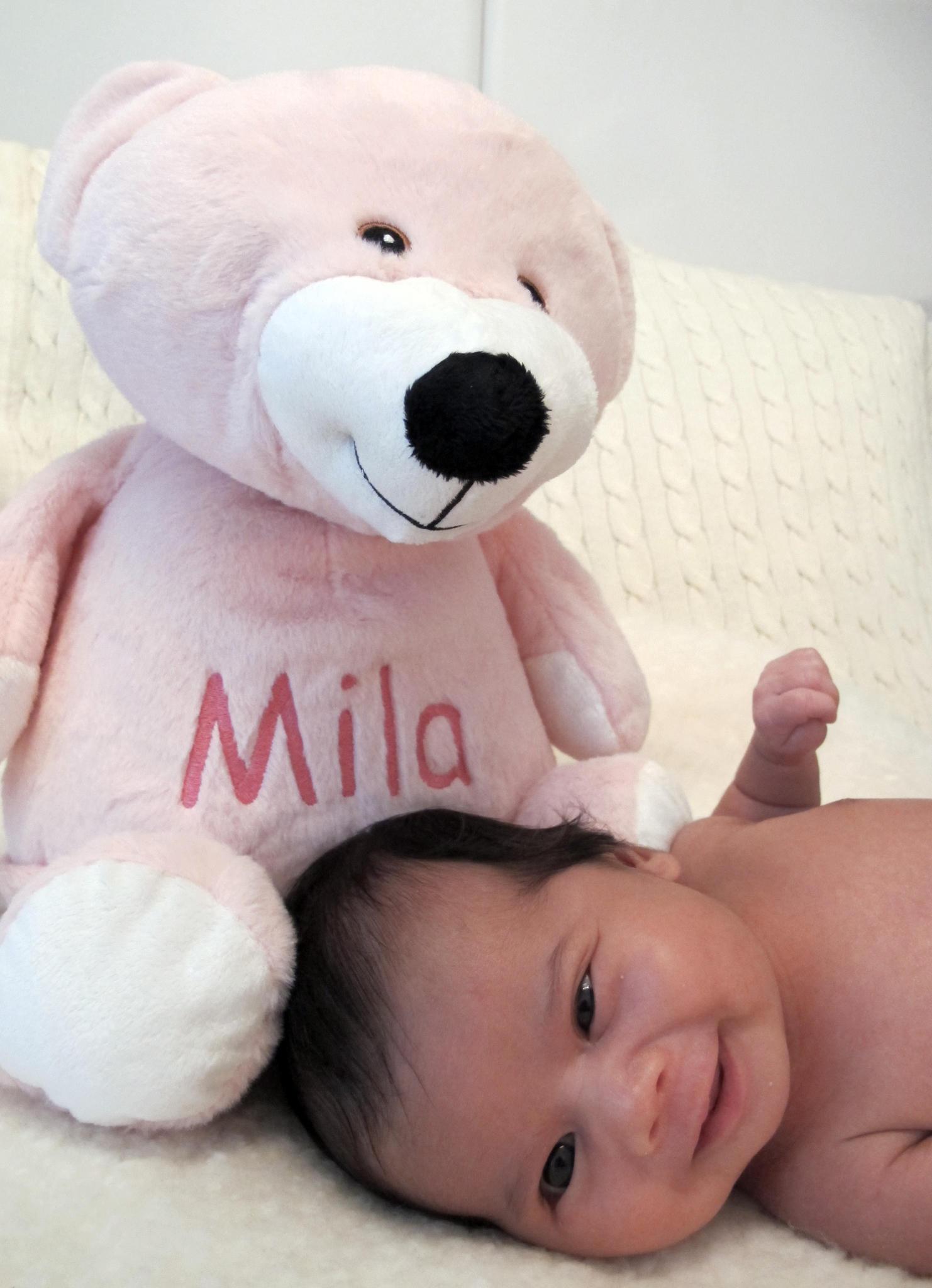 Bay Mila Pink EB bear