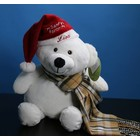 Embroider Buddy Christmas Hat