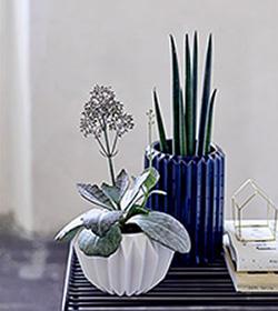 vasen und bert pfe im skandinavischen stil bestellen wohnbeiwerk. Black Bedroom Furniture Sets. Home Design Ideas