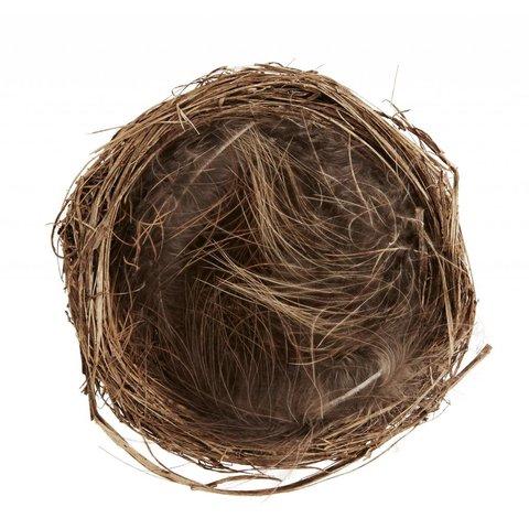 Nest braun aus Stroh und Federn