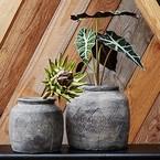 Vasen und Übertöpfe