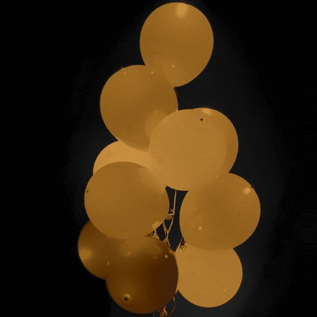 Bruine Led Ballonnen met schakelaar 30cm 4 stuks