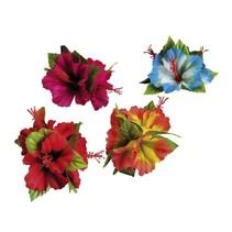 Haarbloem Hibiscus 9cm
