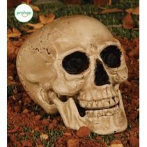Halloween Schedel 24cm