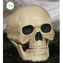 Halloween Schedel 20cm