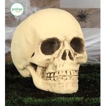 Halloween Schedel 40cm