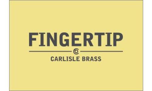 Fingertip Designs