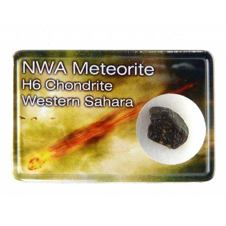 NWA H6 chondriet in doosje