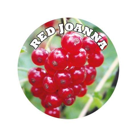 Aroma Rote Johannisbeere - Lebensmittelaroma E Liquid OHNE Nikotin