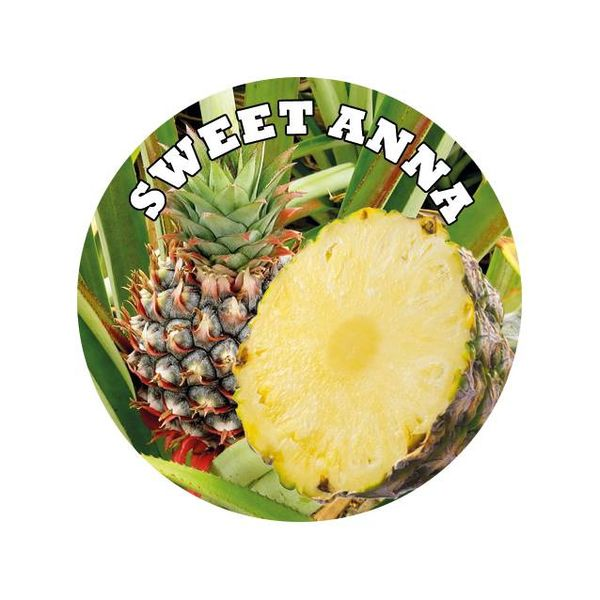 Laguna OVERDOSED xxx Ananas Devil Inside Shake&Vape E-Liquid Base