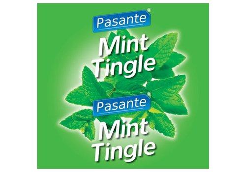 Pasante Pasante Mint Flavour Kondome 144 Stück