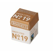 Bradley's Piramini Ginger Citrus tea 19